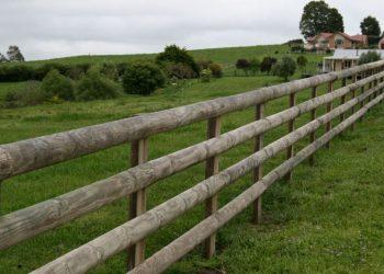 round_rail_fence-127-800-600-80